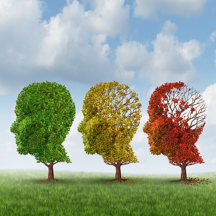 Elderly Care in Woolwich Township NJ: What Can You Expect During the Moderate Stage of Alzheimer's Disease?